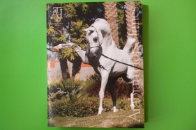 Pewter- Specialty Magazines, Web  Arabian Horse Times